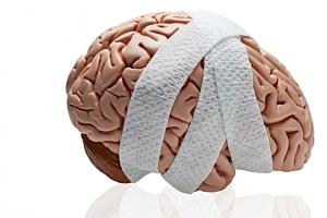 Concussion CME