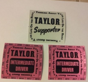 T.A.Y.L.O.R. Pink Decal